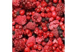 Сушка плодов и ягод - обзор способов