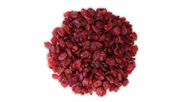 Барбарис красный ягоды