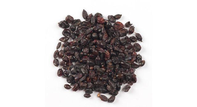 Барбарис черный ягоды