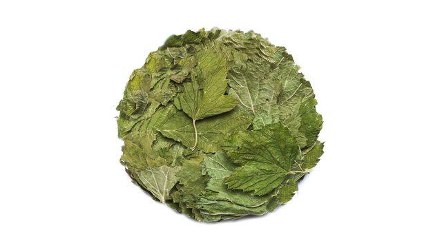 Смородина лист
